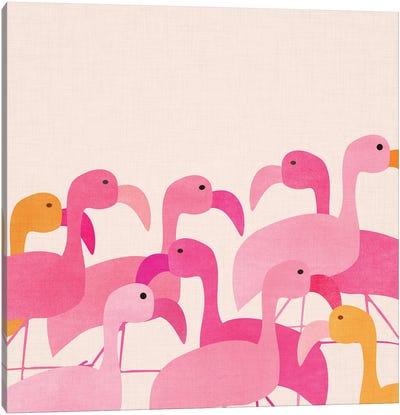 Florida Flamingos Canvas Art Print