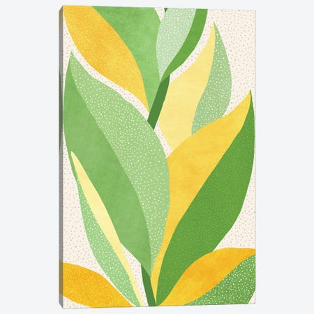 Sunny Contemporary Nature Canvas Print #MTP222} by Modern Tropical Canvas Wall Art