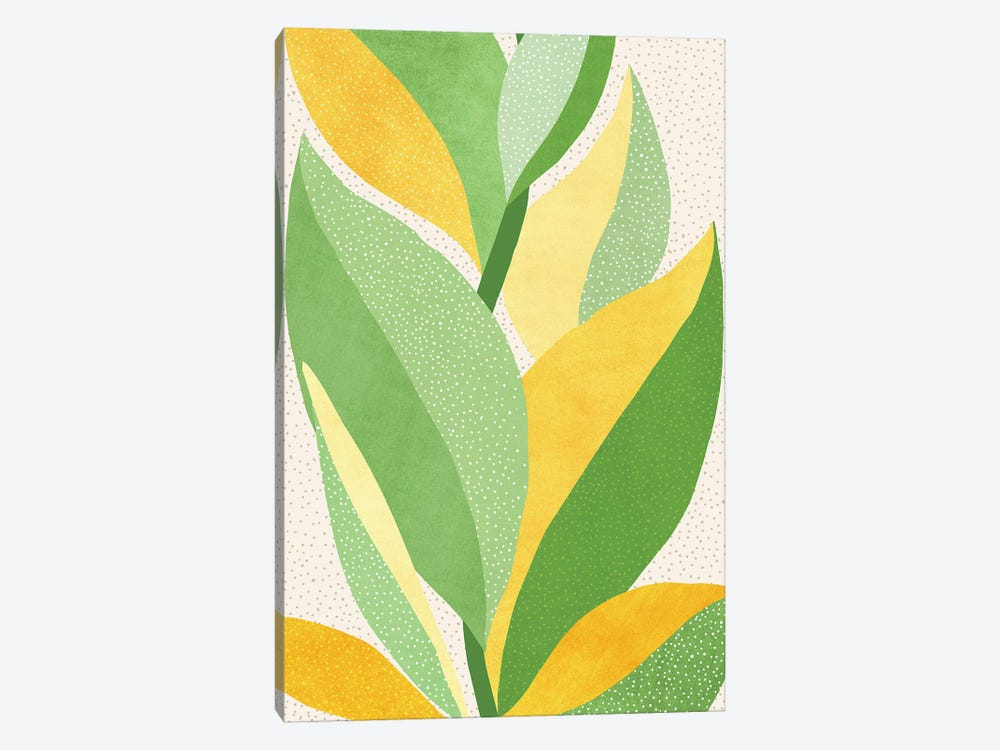 Sunny Contemporary Nature by Modern Tropical 1-piece Canvas Art Print