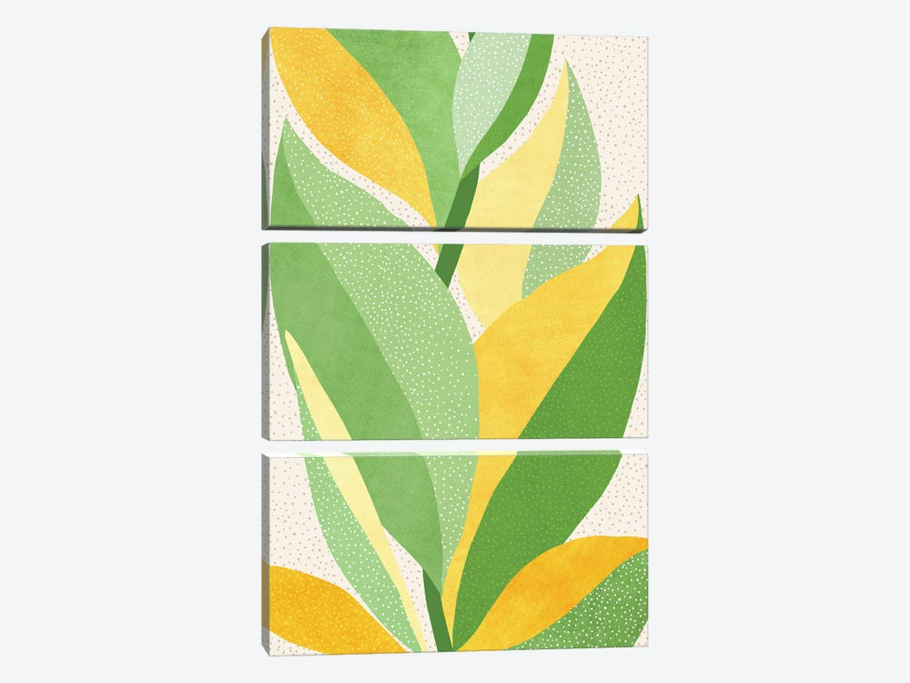 Sunny Contemporary Nature by Modern Tropical 3-piece Art Print