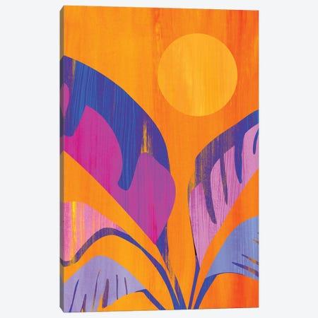 Mystic Tropics Canvas Print #MTP223} by Modern Tropical Canvas Artwork