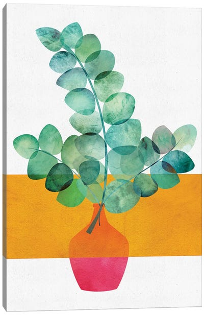 Eucalyptus And Sunshine Canvas Art Print