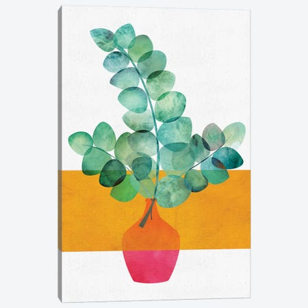 Eucalyptus And Sunshine Canvas Print #MTP23} by Modern Tropical Canvas Art