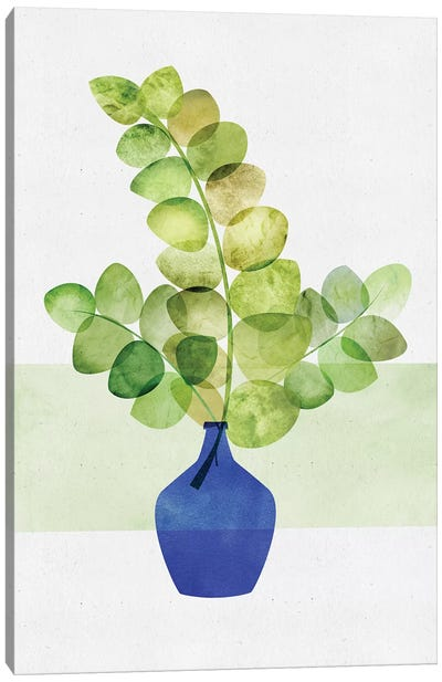 Eucalyptus Study Canvas Art Print