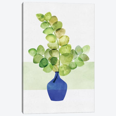 Eucalyptus Study Canvas Print #MTP24} by Modern Tropical Canvas Print
