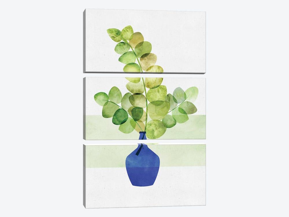 Eucalyptus Study by Modern Tropical 3-piece Canvas Wall Art