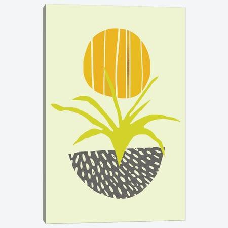Abstract Minimal Desert Canvas Print #MTP3} by Modern Tropical Canvas Print