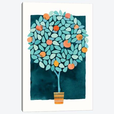 Orange Tree At Midnight Canvas Print #MTP52} by Modern Tropical Canvas Art Print