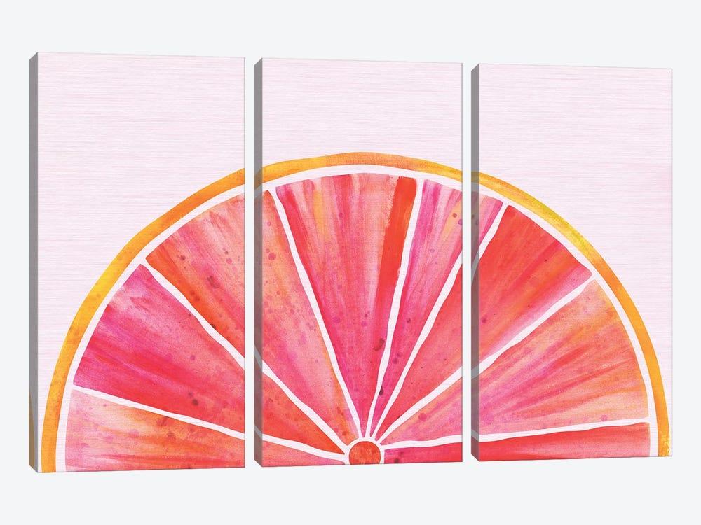 Sunny Grapefruit by Modern Tropical 3-piece Canvas Art Print