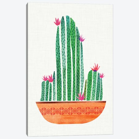 Tiny Cactus Blossoms I Canvas Print #MTP68} by Modern Tropical Canvas Art