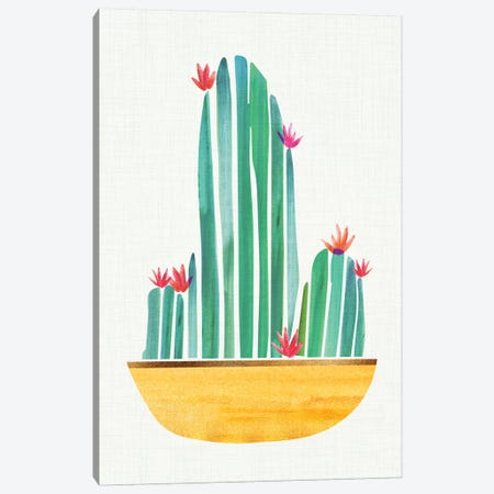 Tiny Cactus Blossoms II Canvas Print #MTP69} by Modern Tropical Canvas Wall Art