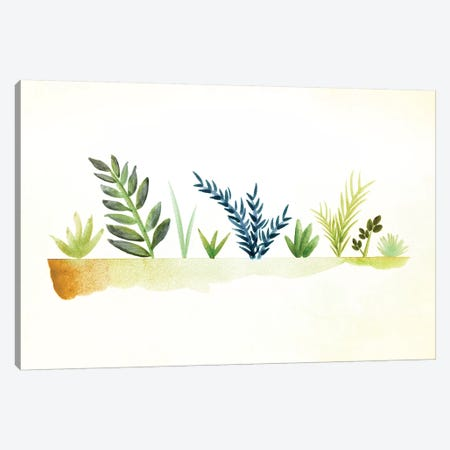 Tiny Garden Watercolor Canvas Print #MTP70} by Modern Tropical Art Print