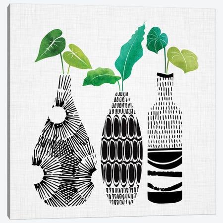 Tribal Vases Trio Canvas Print #MTP71} by Modern Tropical Art Print
