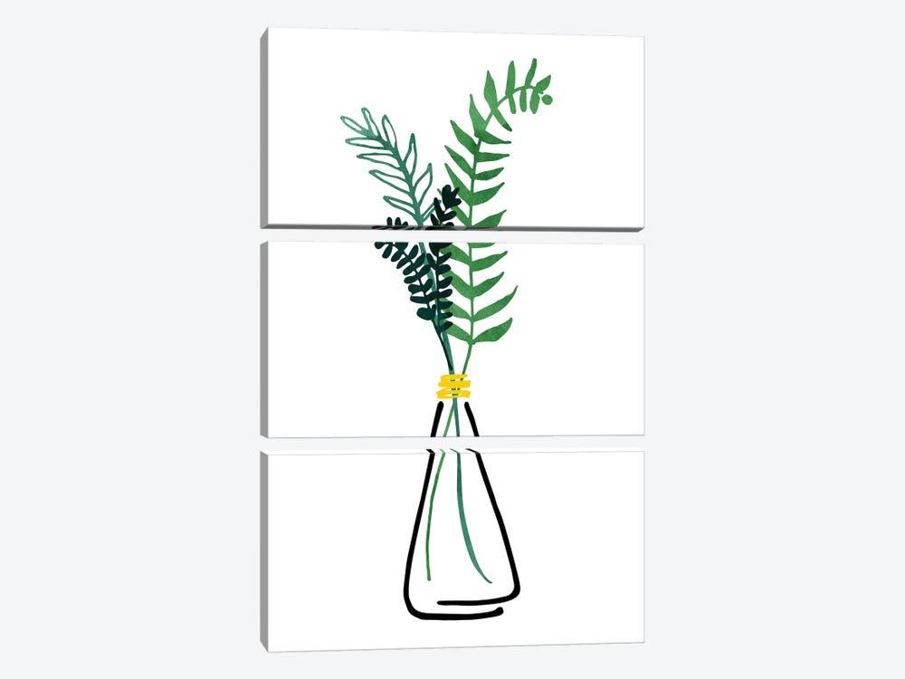Italian Herbs by Modern Tropical 3-piece Canvas Art