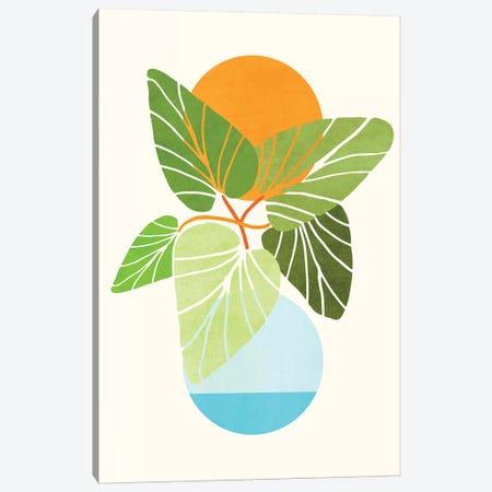 Tropical Symmetry II Canvas Print #MTP99} by Modern Tropical Canvas Art Print