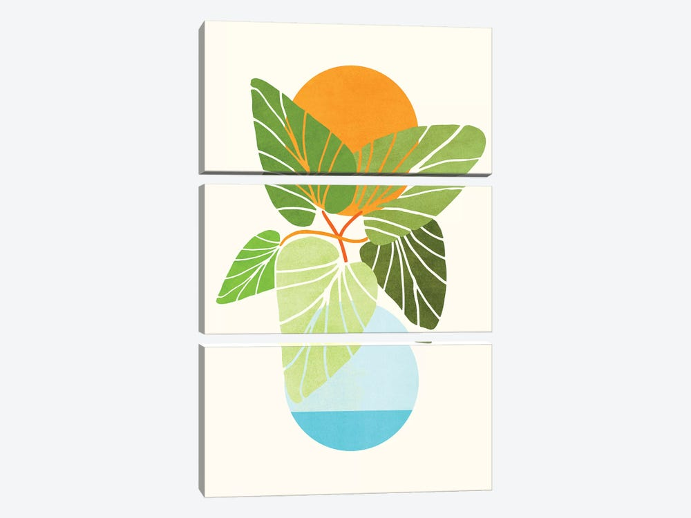 Tropical Symmetry II by Modern Tropical 3-piece Canvas Art