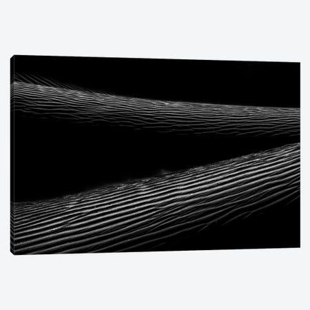Dark Sands VII Canvas Print #MTS129} by Martin Steenhaut Canvas Art Print