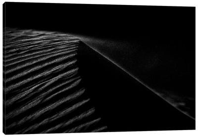 Dark Sands VIII Canvas Art Print