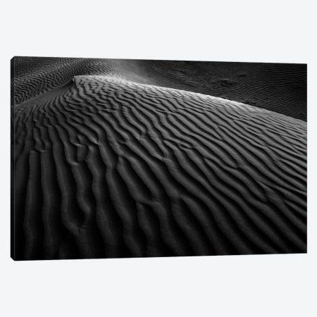 Dark Sands XI Canvas Print #MTS133} by Martin Steenhaut Canvas Artwork