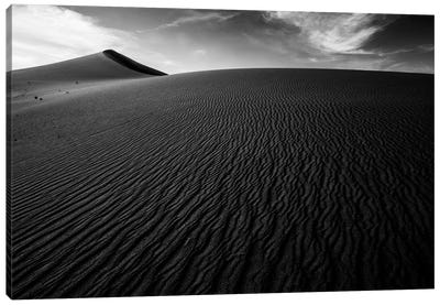 Dark Sand Dunes Canvas Art Print