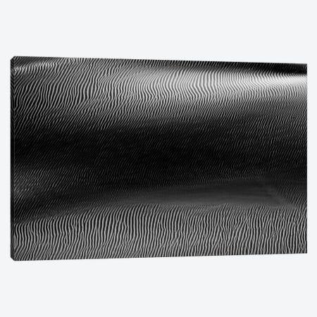Dark Sands XV Canvas Print #MTS139} by Martin Steenhaut Canvas Artwork