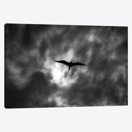Dark Clouds Canvas Print #MTS25} by Martin Steenhaut Canvas Wall Art