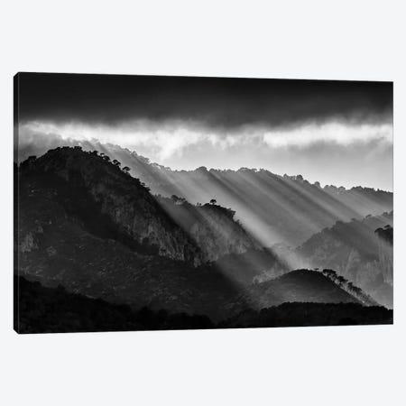 Divine Lights Canvas Print #MTS28} by Martin Steenhaut Canvas Print