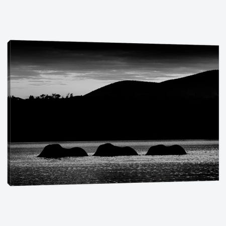 Elephant Night Bathing Canvas Print #MTS33} by Martin Steenhaut Canvas Wall Art