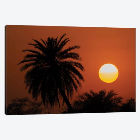 Indian Sunset Canvas Print #MTS65} by Martin Steenhaut Canvas Artwork