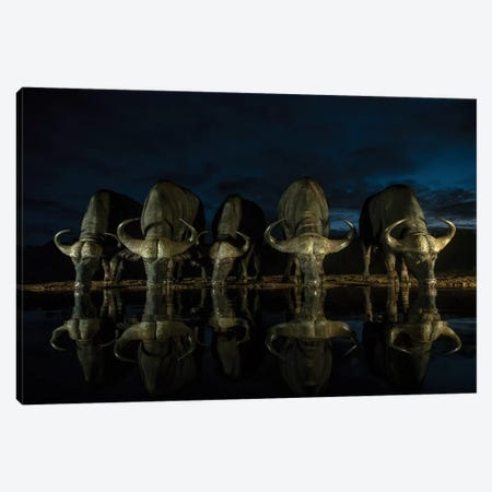 Night Drinkers Canvas Print #MTS83} by Martin Steenhaut Canvas Art Print