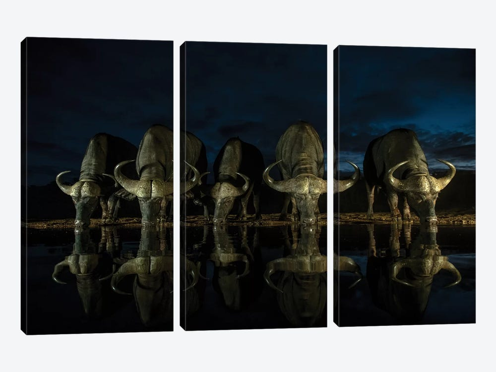 Night Drinkers by Martin Steenhaut 3-piece Canvas Print