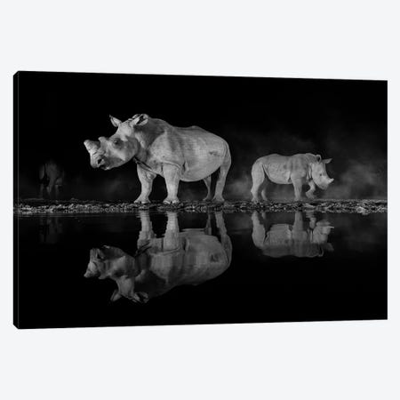 Night Rhino Canvas Print #MTS84} by Martin Steenhaut Canvas Wall Art