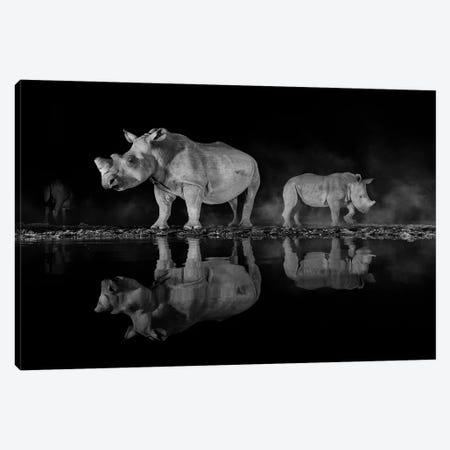 Night Rhino Canvas Print #MTS84} by Martin Steenhaut Canvas Wall Art