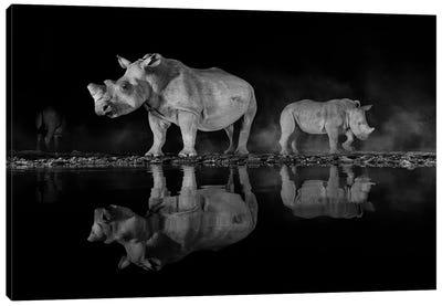 Night Rhino Canvas Art Print