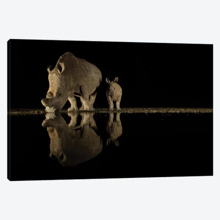 Night Rhino II Canvas Print #MTS85} by Martin Steenhaut Canvas Wall Art