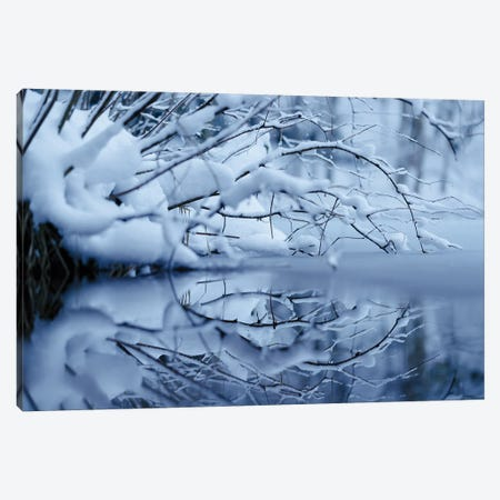 Winter Reflection Canvas Print #MTU116} by Mateusz Piesiak Canvas Art Print