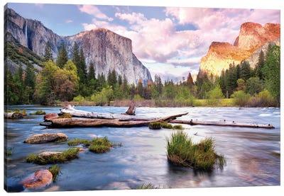 Yosemite National Park Canvas Art Print