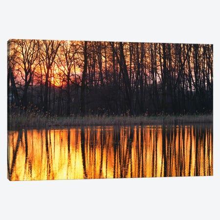 Sunset Canvas Print #MTU150} by Mateusz Piesiak Canvas Artwork
