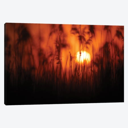Sunset II Canvas Print #MTU194} by Mateusz Piesiak Canvas Print
