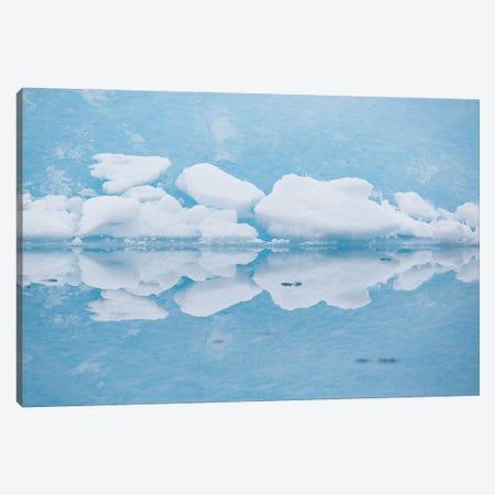 Reflection Canvas Print #MTU63} by Mateusz Piesiak Canvas Art Print