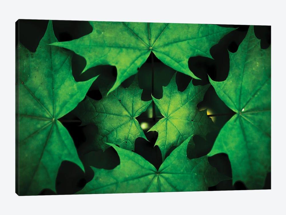 Fractals by Mateusz Piesiak 1-piece Art Print