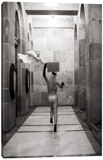 Exhibitionist III Canvas Art Print