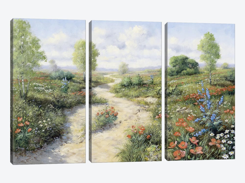 Road To… by Peter Motz 3-piece Canvas Art