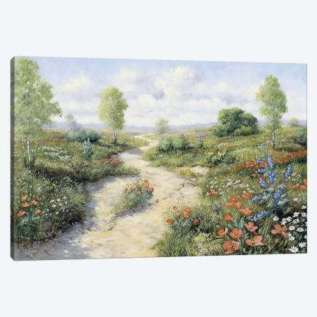 Road To… Canvas Print #MTZ39} by Peter Motz Art Print
