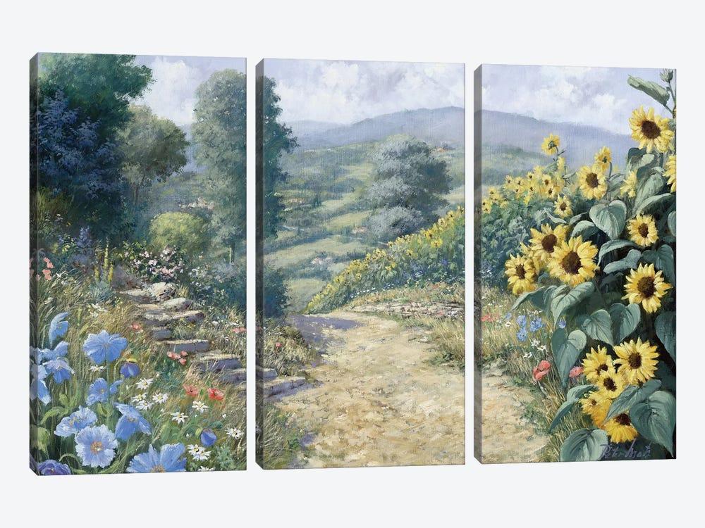 Along The Sunflowers by Peter Motz 3-piece Art Print