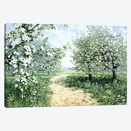 Spring Canvas Print #MTZ43} by Peter Motz Canvas Artwork