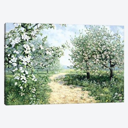 Spring Canvas Print #MTZ43} by Peter Motz Canvas Artwork