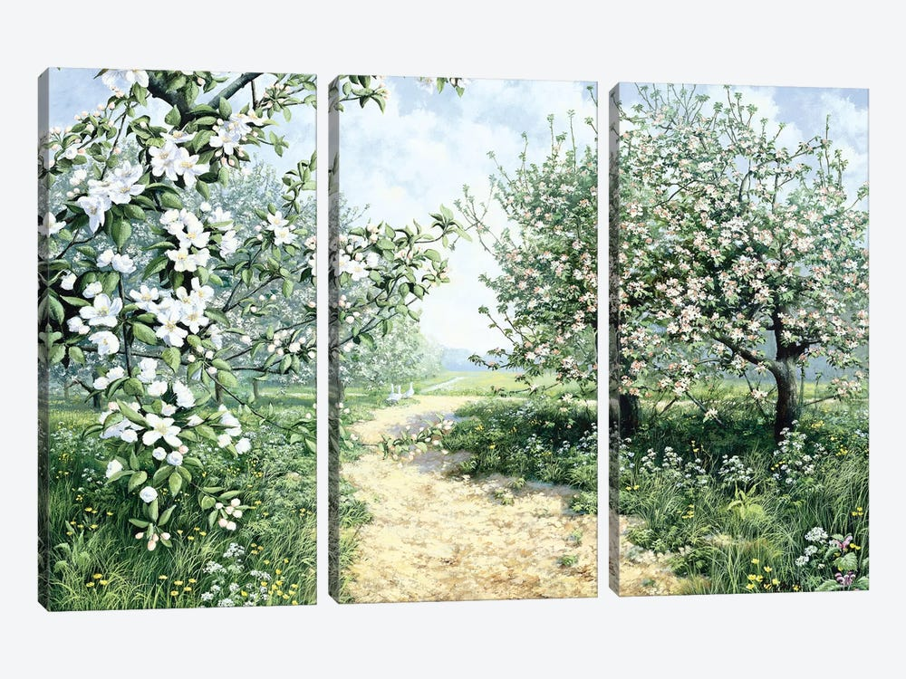Spring by Peter Motz 3-piece Canvas Print