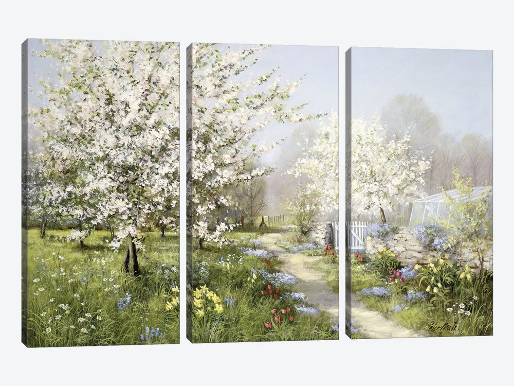 Spring Blossoms by Peter Motz 3-piece Canvas Art