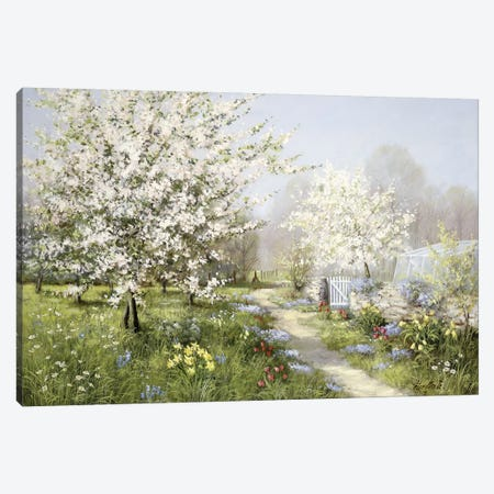 Spring Blossoms Canvas Print #MTZ44} by Peter Motz Canvas Print